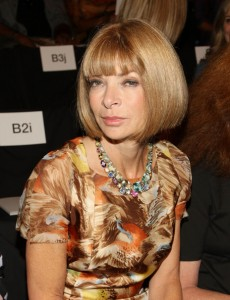 Vogue editor Anna Wintours support for gay rights recognised