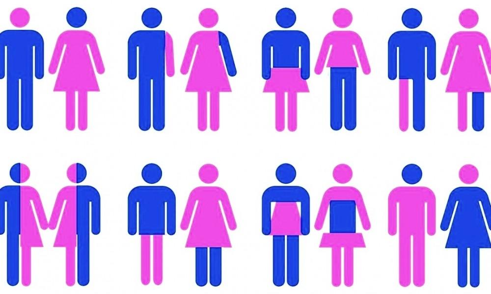 all gender birth certificate