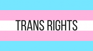 Global lesbian media unite for trans rights